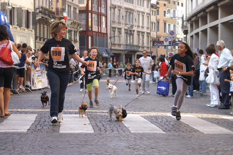 Corsa con il cane SCHESIR – FORMEVET